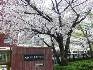 大阪市立平野中学校 徒歩5分